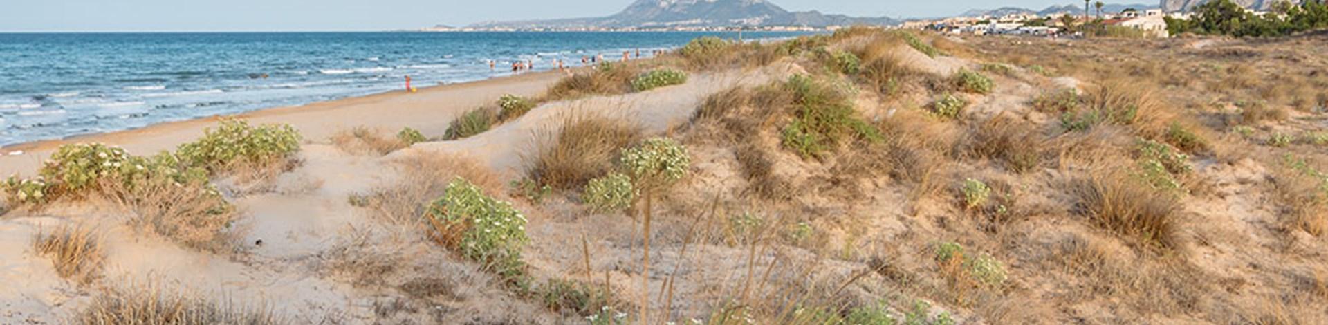 La Garrofera Beach